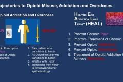 Interventions to Address Opioid Addiction